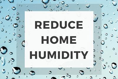 Reduce Home Humidity Blog Image